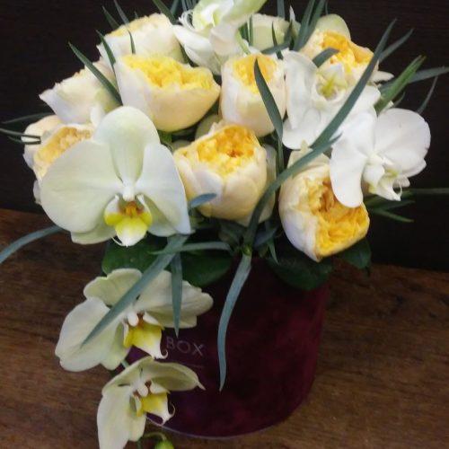 Orchideju ir bijuniniu roziu dezute